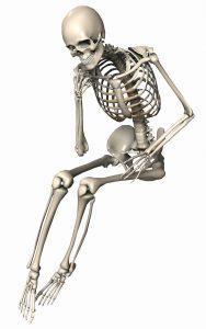 szkielet 01